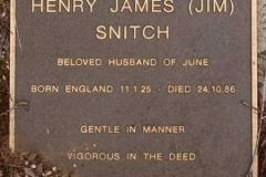 Henry James Snitch 3